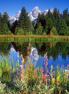 Snake River, Grand Teton National Park, Wyoming, United States.