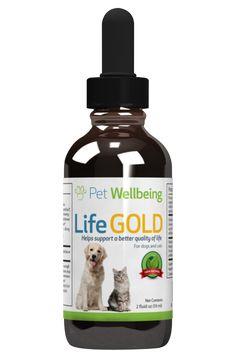 Life Gold - Dog Cancer Support