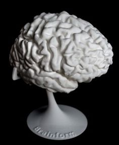 Even more detailed than the 3D Selfie: this New Zealand company will 3D Print your brain and allow you to Hold Your Brain in Your Hands