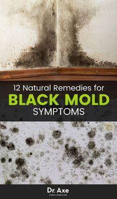 "Natural Home Remedies Some black mold symptoms can actually be really serious. You may have found this article from googling ""black mold in shower"" or ""mold in house."" - Plus, the top 12 ways to get this toxic mold out of your house - and body. Clean Black Mold, Remove Black Mold, How To Remove, Cleaning Mold, Household Cleaning Tips, Cleaning Hacks, Cleaning Schedules, Cleaning Recipes, Black Mold In Shower"