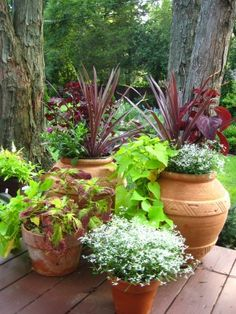 Grouping of plant containers add interest to deck