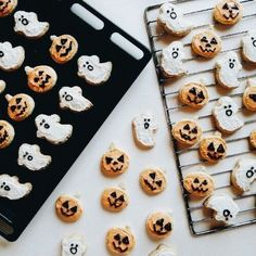 pumpkin and ghost cookies for a festive and delicious halloween treat Halloween Cookies, Halloween Treats, Halloween Biscuits, Halloween Party, Spooky Treats, Holidays Halloween, Happy Halloween, Halloween Inspo, Spooky Halloween