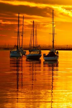 Sailing Yacht Charter - Search for Yachts and Catamarans Beautiful Sunset, Beautiful World, Beautiful Images, Beautiful Beaches, Sunset Beach, Belle Photo, Wonders Of The World, Sailing Ships, Sailing Boat