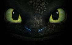 How-to-Train-Your-Dragon-2-toothless-wallpaper-hd1.jpg (1920×1200)