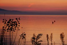 #Sonnenuntergang in #Wasserburg am #Bodensee Celestial, Sunset, Outdoor, Water, Outdoors, Sunsets, Outdoor Games, The Great Outdoors, The Sunset