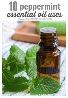 peppermint essential oil uses for parents