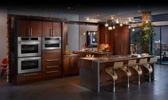 Modern Kitchen Design Ideas with Incorporated Appliances and Hidden Water Filters Picture