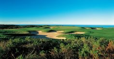 Read our guide to playing the Pezula Golf Course in South Africa. Eagle Golf Tours is ATOL Protected. Golf Holidays, Golf Tour, Us Travel, Golf Courses, Africa, Tours, River, Garden, Outdoor