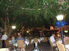 Atrion Garden Restaurant Prawn Cocktail, Wine Chiller, Paphos, Alexander The Great, Evening Meals, Best Beer, Greek Recipes, Water Features, First Night