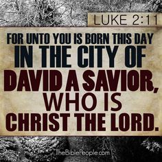 "seasonalwonderment: "" thelordismylightandmysalvation: "" Jesus is the reason we celebrate Christmas! "" """