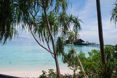 honeymoon, Borneo, tropical destination, honeymoon adventures, travel, Borneo, Lankayan Island, Abai Jungle Lodge, Sandakan, Orangutans, Elephants, Turtles, River Safari   As seen on Pocketful of Dreams.