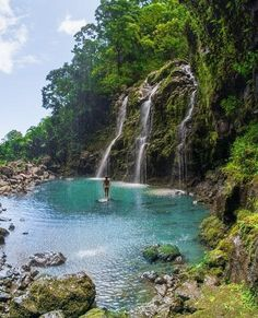 There are tons of hidden gems in Maui waiting to be found by you! Give Quam Properties a call today to book your vacation rental and let our concierge specialists assist you in excursions and activities!  (888) 665-1315 #Maui #hiddengem #vacation #vacationrentals #excursions #adventure