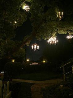 The Nerdy Girlie: LA Bucket List: The Chandelier Tree | LA Bucket ...
