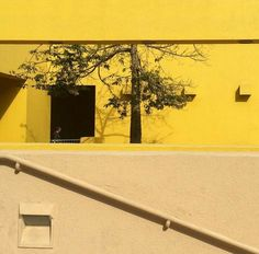 yellow aesthetic | Tumblr