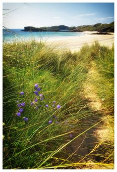Grass, Sand and The Sea at Oldshoremore Beach, Scotland