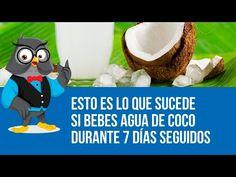 Esto Es Lo Que Sucede Si Bebes Agua De Coco Durante 7 Días Seguidos - YouTube