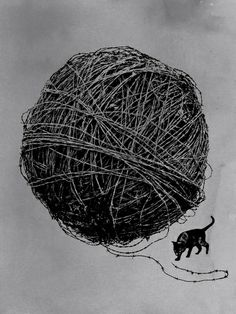 Curiosity  by Rob Dobi