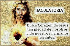 Dulce Corazón de Jesús, ten piedad de nosotros y de nuestros hermanos errantes.