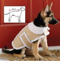 Easy DIY No Sew Dog Jacket DIYReady.com | Easy DIY Crafts, Fun Projects, & DIY Craft Ideas For Kids & Adults