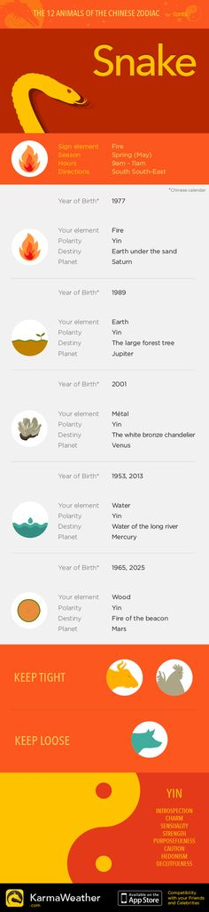 Snake — Infography and Chinese horoscope for your zodiac sign #KarmaWeather - Chinese compatibility app for iPhone