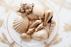DIY: Des coquillages dorés