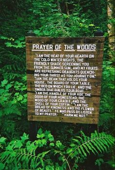 Prayer of the Woods. Quote for living room wall?