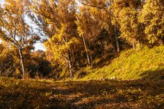 To #Salerno sud #Italy my city, #autumn today. #photography #canon #nature