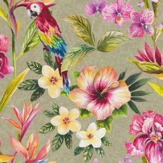 Tropically inspired wallpaper with colourful birds on a natural background. From the Paradise collection, Bird of Paradise 98431 by Holden. Available in NZ through Guthrie Bowron stores.