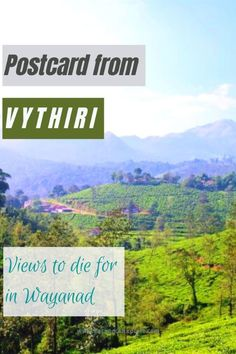 Vibrant Vistas of Vythiri - Backpack Explore Travel Destinations In India, India Travel Guide, Asia Travel, Travel Usa, Travel Deals, Travel Tips, Hill Station, Tourist Places, Concrete Jungle