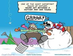 542 best tundra comics images on pinterest comic strips comics