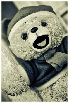 Teddy by Alejandro Fhn