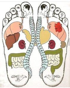 Massage Tips, Massage Techniques, Foot Massage, Massage Therapy, Acupressure Treatment, Acupressure Points, Reflexology Massage, Medical Anatomy, Body Anatomy