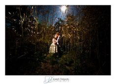 Creative lighting used for this wedding portrait at the Willowwood Aboretum.