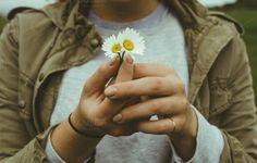 Girl holding Daisy by Sean Berrigan Photography on Creative Market