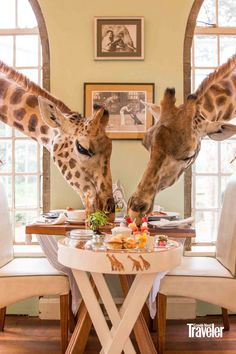 Top Hotels, Beach Hotels, Luxury Hotels, Giraffe Pictures, Unusual Hotels, Safari, Beautiful Hotels, Nairobi, Africa Travel