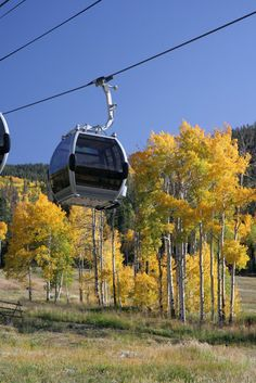 14 Top-Rated Attractions & Places to Visit in Colorado, USA Vail Village, Vail Colorado, Places Ive Been, Places To Visit, Destinations, Bucket, Trees, Outdoors, In This Moment