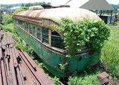 abandoned vehicles as garden containers.....not a bad idea.