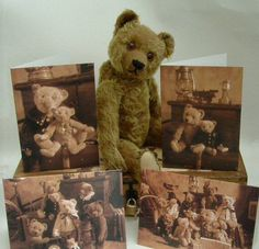 Old teddy bear in front of pictures of past lives.