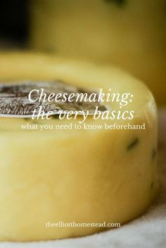 Cheesemaking: the very basics
