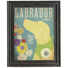 Between his active sports and hunting schedule, our playful Labrador is taking time to smell the posies. He's sniffed out a sampling of the beautiful flowers found in his homeland. Hang this print with pride for years of loyal enjoyment.
