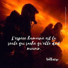 37 Meilleures Images Du Tableau Sapeurs Pompiers Sapeur
