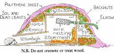 Hedgehog Bottom Rescue - Build a Hedgehog House