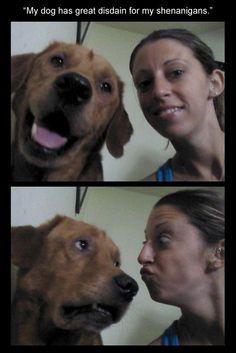 Dog shenanigans...Love that face