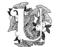Letter U print - Alphabet, Calligraphy, Typography, Monogram, Flowers - Black and White ink art print