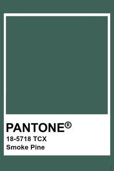 Pantone Tcx, Pantone 2020, Pantone Colour Palettes, Pantone Color, Colour Schemes, Color Trends, Earthy Color Palette, Color Harmony, World Of Color