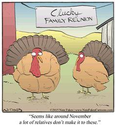 Thanksgiving Humor   Break of Day on Go Comics Thanksgiving Turkey Pictures, Funny Thanksgiving Memes, Thanksgiving Cartoon, Thanksgiving Cards, Turkey Jokes, Turkey Cartoon, Funny Cartoons, Funny Comics, Chicken Humor