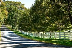 Berkshire Stud: 441 Carpenter Hill Road, Pine Plains. Two barns with stabling for approximately forty horses, roughly 350 acres of lush pastures and incredible views of Stissing Mountain.