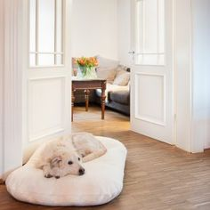 Kuscheliges Lounge Hundekissen Teddy Nature