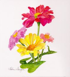 Watercolor Zinnias