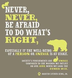 Never be afraid to do what's right, especially if the well-being of a person or animal is at stake. Society's punishments are small compared to the wounds we inflict on our soul when we look the other way. Martin Luther King Jr.